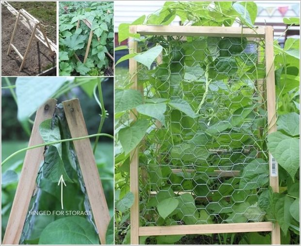 10-easy-yet-beautiful-diy-garden-trellis-projects-9