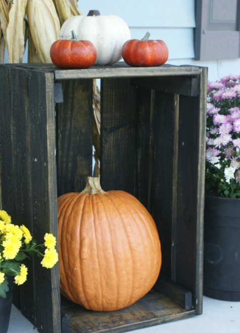 pumkin-storage-copy
