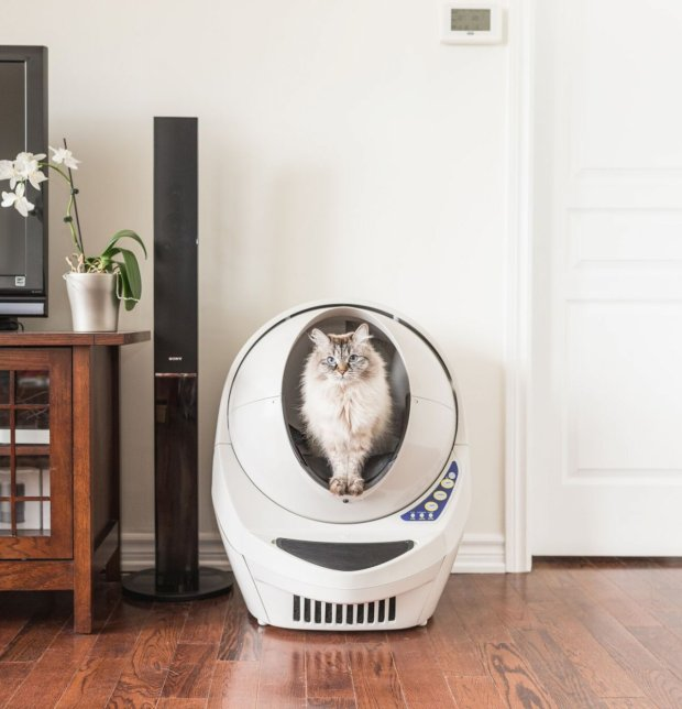 this-automatic-self-cleaning-litter-box-literally-does-the-dirty-work-for-you